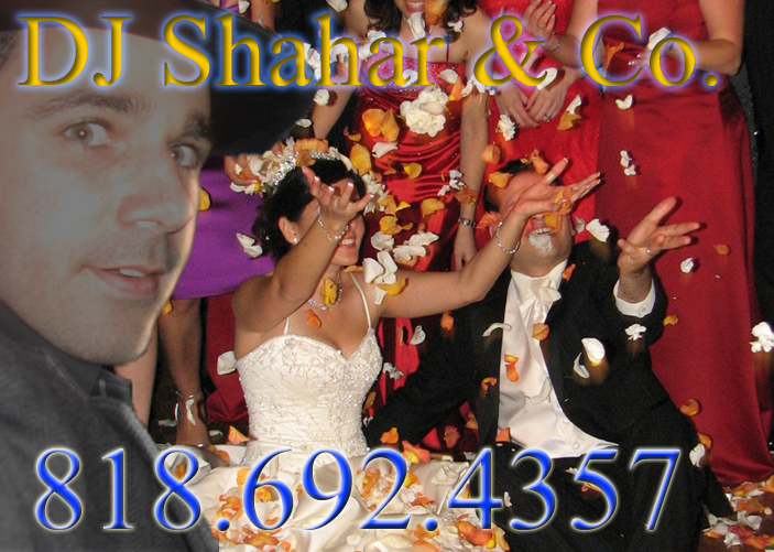 Los Angeles DJ Persian Israeli Wedding Amp Bar Bat Mitzvah DJ In Southern California